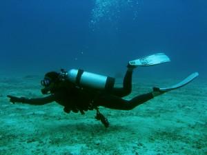bigstock-Dive-Master-1061892-300x225