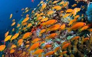 Kandumma Maldives